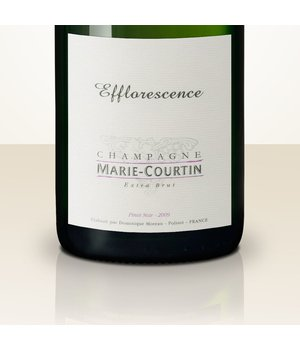 Marie Courtin Efflorescence 2012