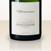 Marie Courtin Efflorescence 2012 MAGNUM