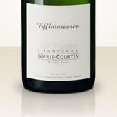 Marie Courtin Efflorescence 2013 MAGNUM
