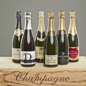 Probierpaket The best Base Champagnes
