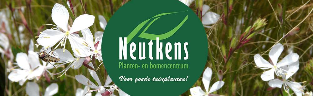 Bezoek Neutkens Planten- en bomencentrum