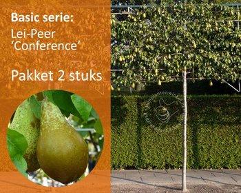 Lei-Peer 'Conference' - Basic - pakket 2 stuks + EXTRA'S!