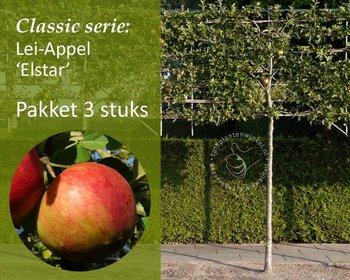 Lei-Appel 'Elstar' - Classic - pakket 3 stuks + EXTRA'S!