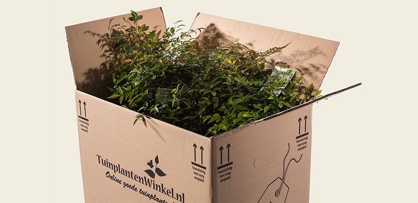 recyclebaar verpakkingsmateriaal