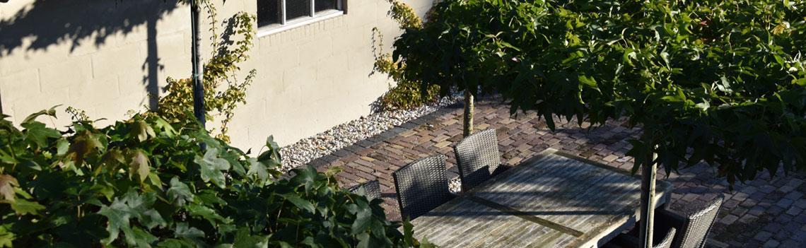 Boven een terras zorgen dakbomen voor een sfeervol plaatje