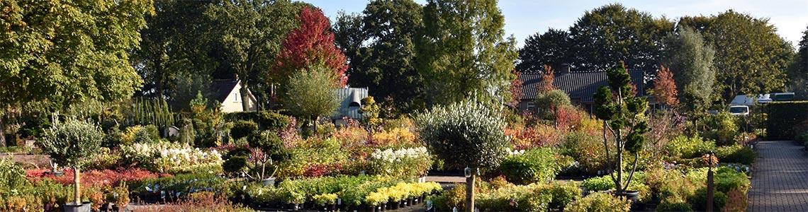 het plantencentrum in de herfst