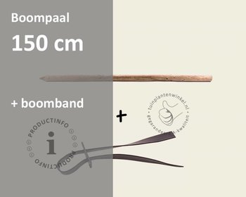 Toebehoren Leibomen los bestellen - Paal 150 cm + Band