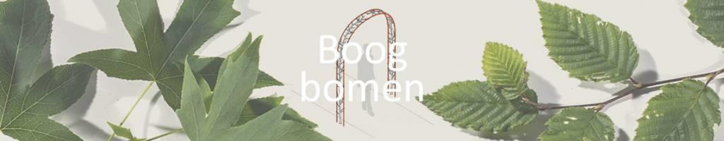 Boogbomen