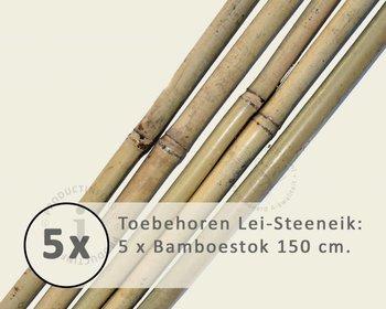 Toebehoren Lei-Steeneik los bestellen - Bamboestok
