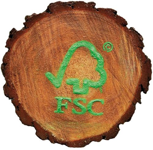 Holz Sonnenbrille Bewoodz nachhaltig FSC zertifiziert