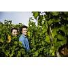 Le Petit Courselle Les Copines Blanc - Wijn van de maand