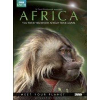 Dutch Filmworks BV Africa