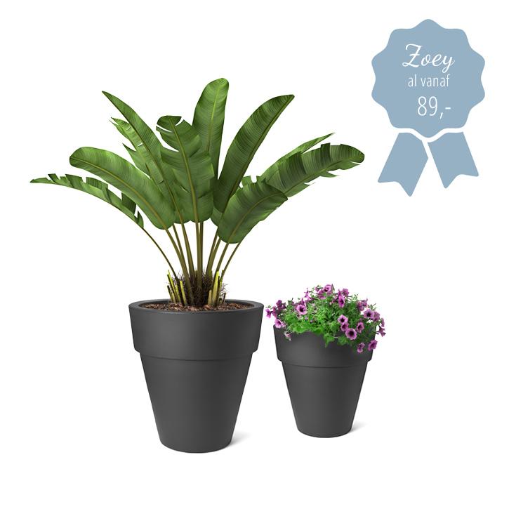Grote bloempotten voor buiten en binnen xxl ikala for Grote planten voor binnen
