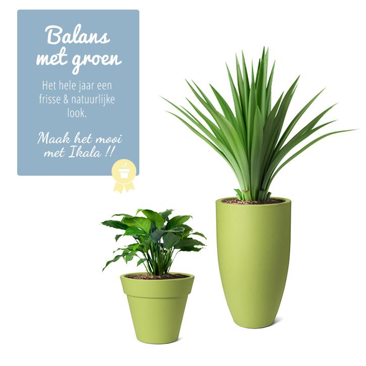 groene bloempotten groene plantenbakken