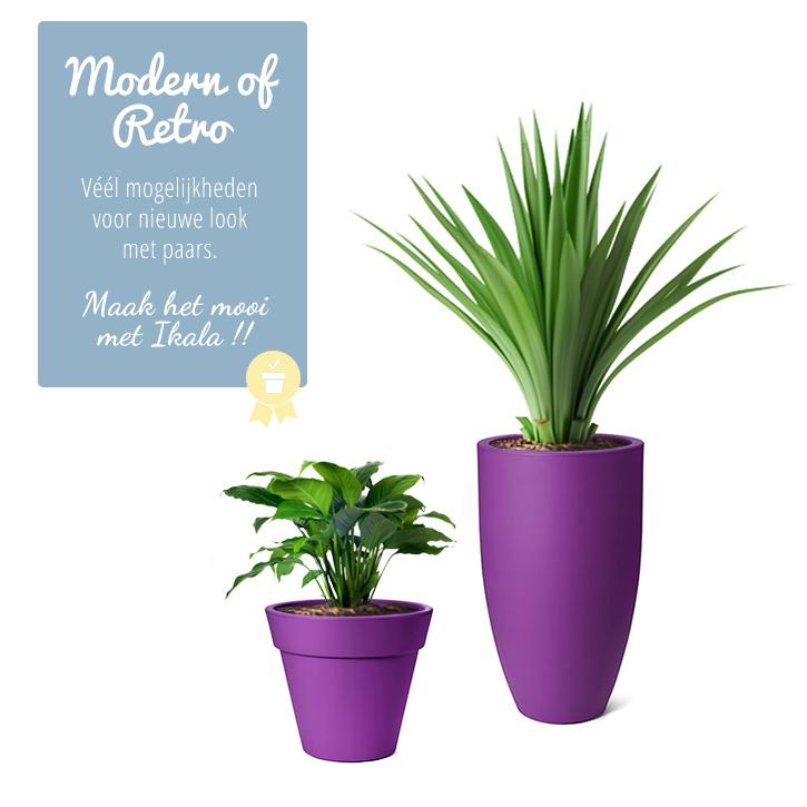 paarse bloempotten paarse plantenbakken