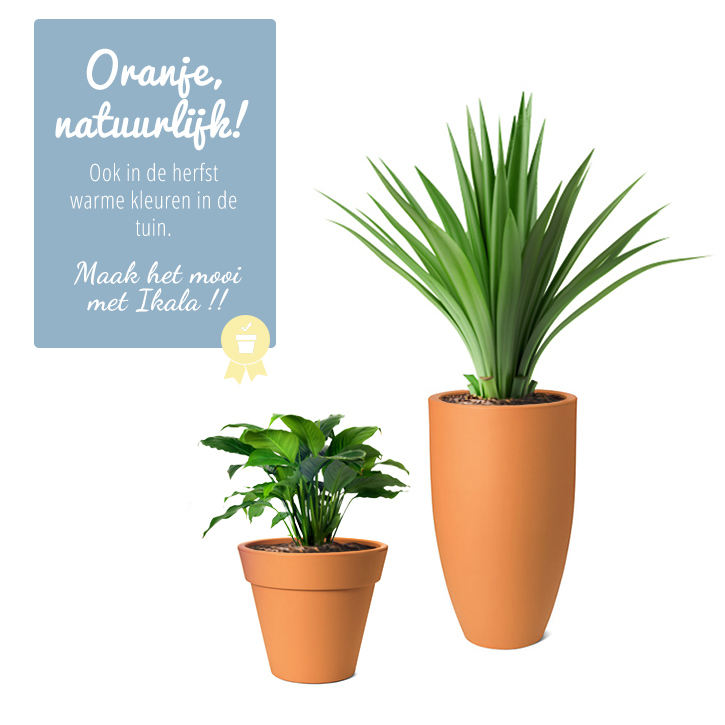 oranje bloempotten oranje plantenbakken