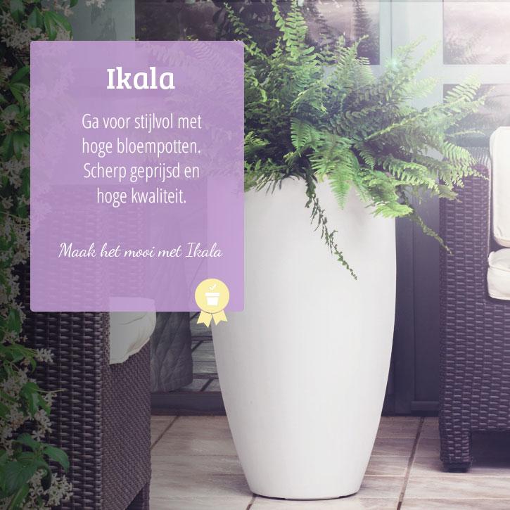 Hoge Bloempotten Voor Binnen.Bekend Hoge Plantenbak Binnen Ljx27 Agneswamu