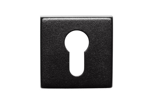 1 BLACK KEY PLATE CILINDER STAINLESS SQUARE