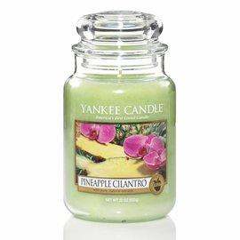 Yankee Candle Große Kerze Pineapple Cilantro