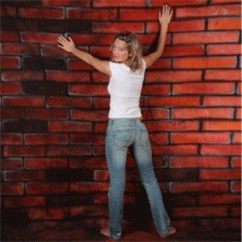 Walimex pro Studio Achtergronddoek 2 in 1 'Bricks', 3x6m