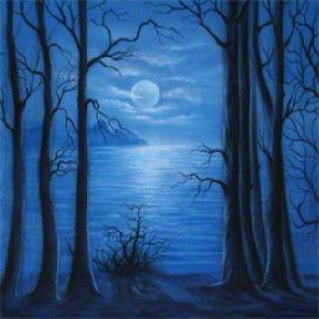 Walimex pro Studio Achtergronddoek 'Moonlight' 3x6m