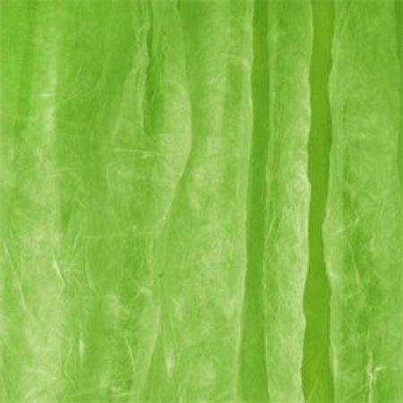 Walimex Cloth Background 3x6m green