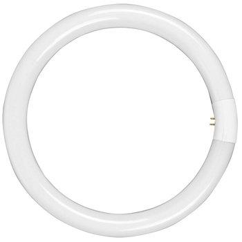 Walimex Reservelamp voor Ringlicht 75W