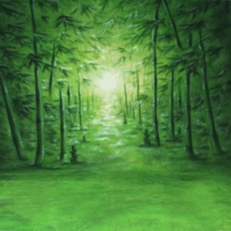 Walimex pro Motif Cloth Background 'Bamboo', 3x6m