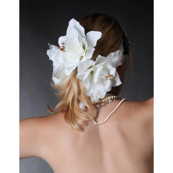 Weiße Amaryllis 2 x