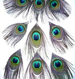 Peacock Upgrade for yarn fall
