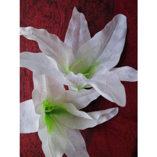 Aloha Lilie weiß 2 x