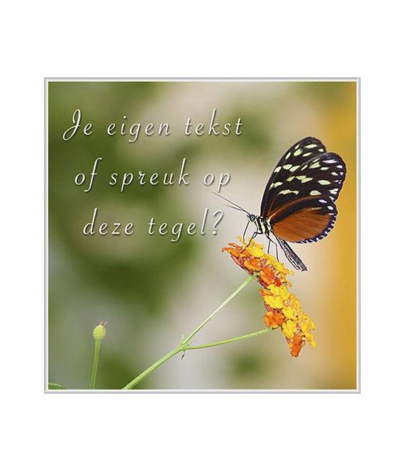 Tegeltje vlinder (1)
