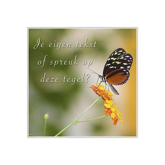 spreuken met vlinders BEDRUKTE TEGELTJES | Vlinder tegel bedrukt met je eigen spreuk  spreuken met vlinders