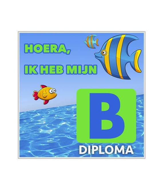 Zwemdiploma B Tegeltje