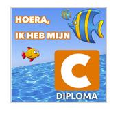 Tegeltje maken zwemdiploma c