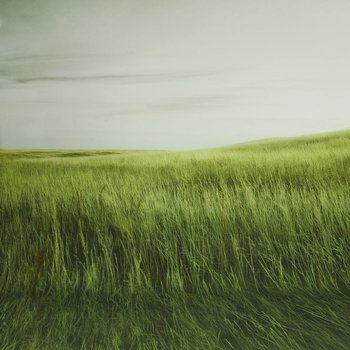 walimex pro Photo Motif Background 'Grass', 3x6m