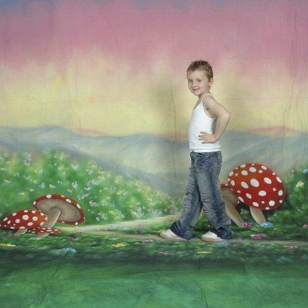 walimex pro Studio Achtergronddoek 2 in 1 'Alice', 3x6m