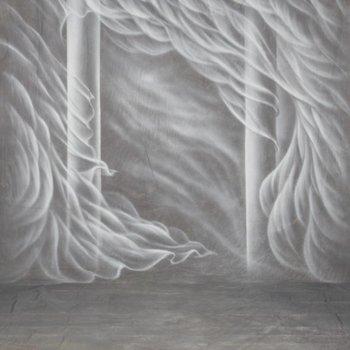 walimex pro Studio Achtergronddoek 2 in 1 'Silk', 3x6m