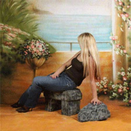 walimex pro Studio Achtergronddoek 2 in 1 'Romance', 3x6m