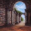 walimex pro Motiv-Stoffhintergrund 'Roma', 3x6m
