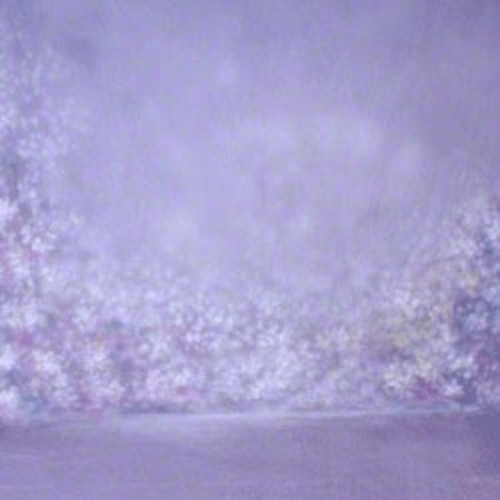 walimex pro Studio Achtergronddoek  2 in 1 'Bright', 3x6m