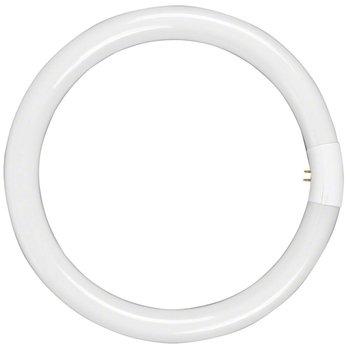 walimex Leuchtmittel für Beauty Ringleuchte, 40W