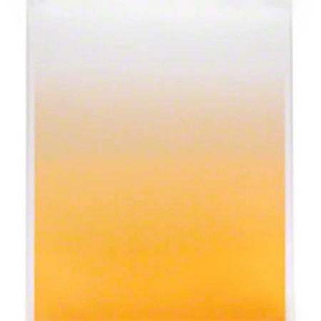 walimex Verlaufs-Hintergrundkarton 80x110cm, 7tlg.