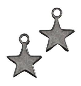 DQ-bedel ster antraciet zilver (2x)