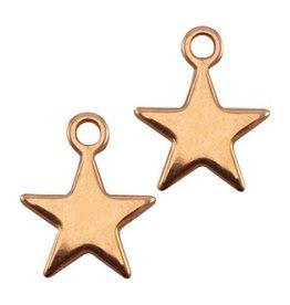 DQ-bedel ster rose goud (2x)