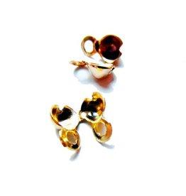 Kalotje zijsluiting goud (10x)