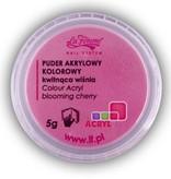 La Femme Colour Acryl 5g blooming cherry