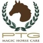 Magic Horse Care
