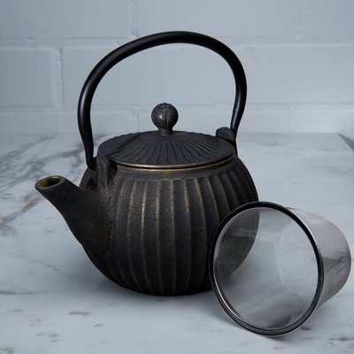 Cast iron tea pot - Xiamen