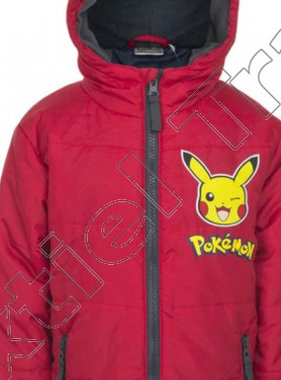 Pokemon winter coat